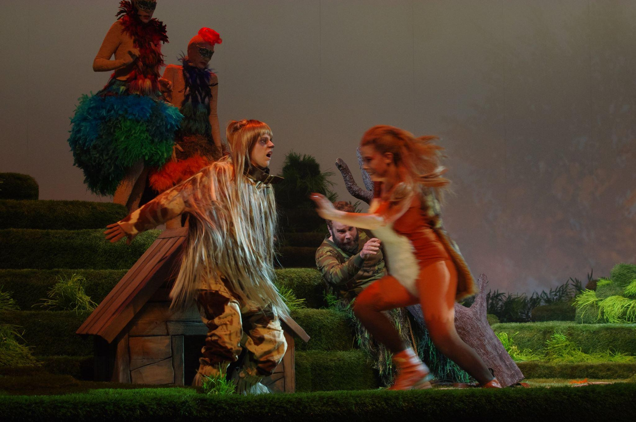 The Cunning little vixen, Norrlandsoperan (Photo: Göran Jarmar)