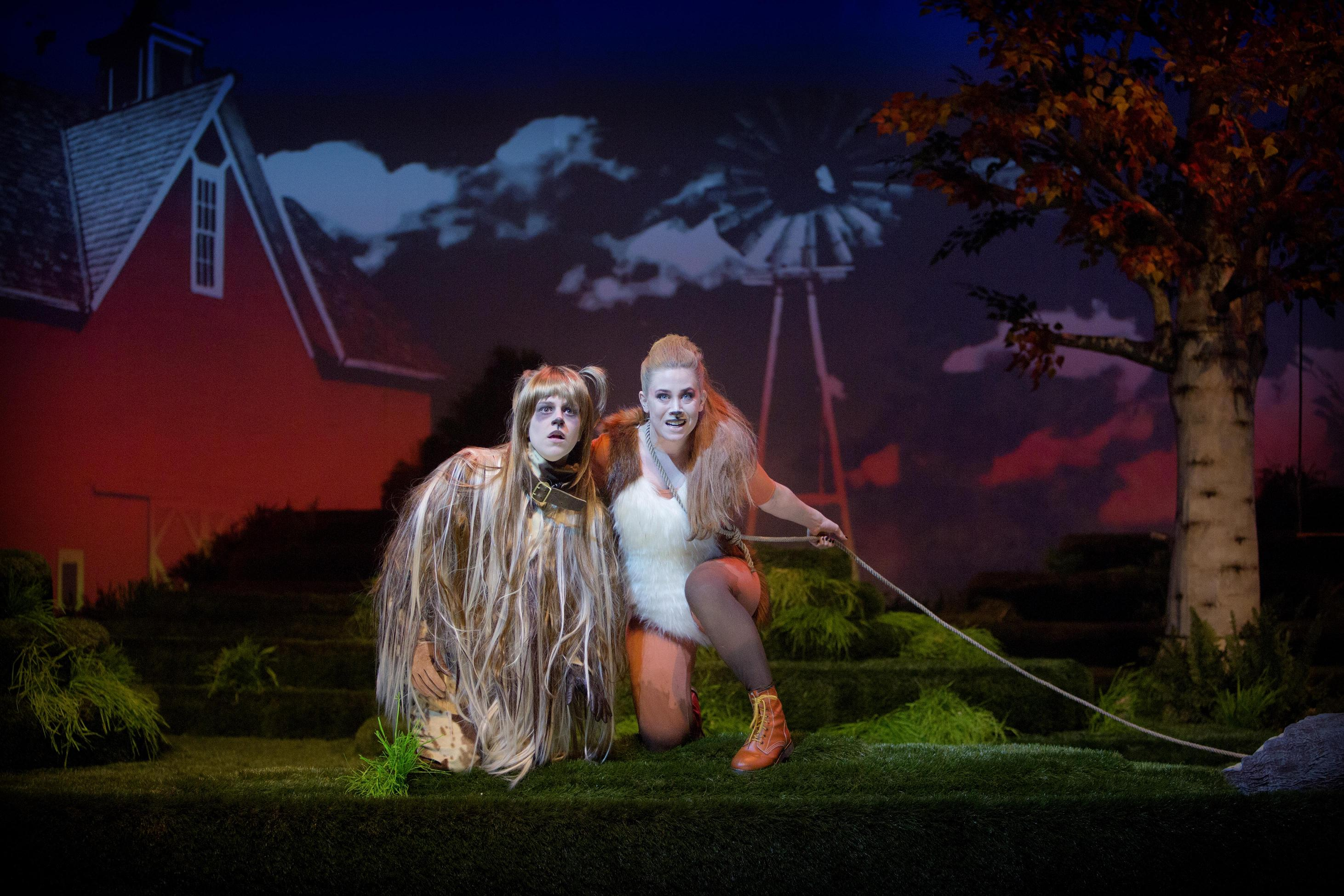 The Cunning little vixen, Norrlandsoperan (Photo: Malin Arnesson
